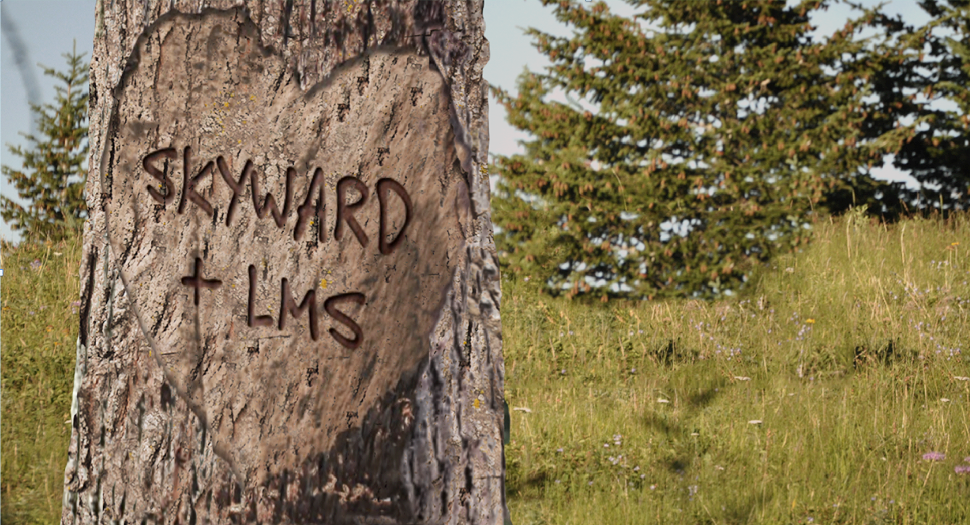 Skyward and the LMS